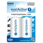 everActive Professional Ready to Use 10000mAh D akumuliatorius, 2 vnt.