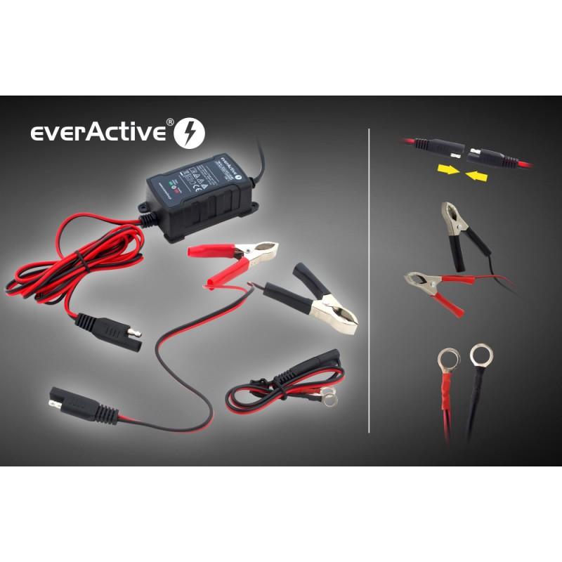 everActive universalus automatinis 6/12V 1000mA akumuliatorių kroviklis