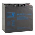 MWPower MW 12V 22Ah M6(F8) AGM akumuliatorius, 6-9 metai